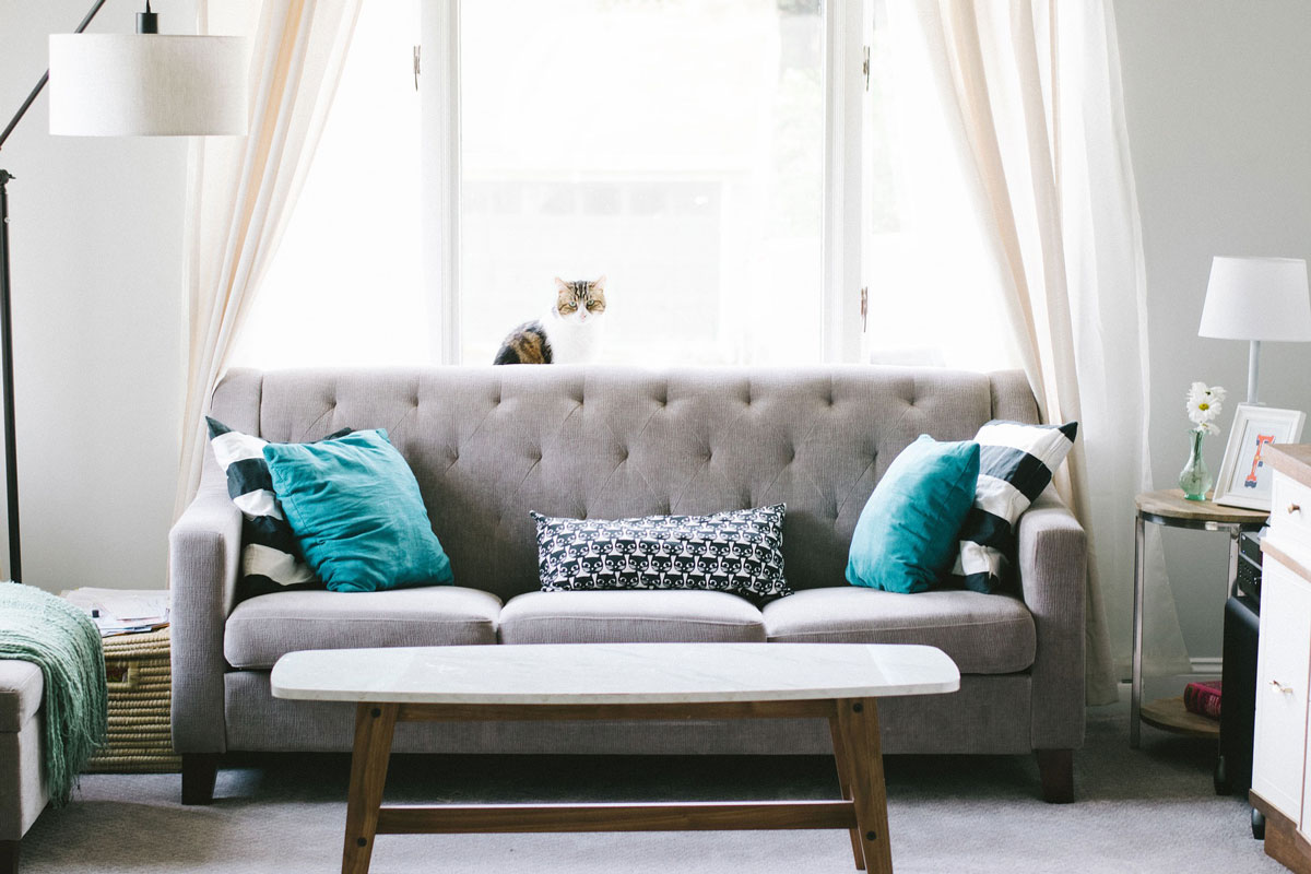 east islip upholstery cleaning